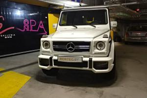Mercedes Benz G Gelendwagen Lux