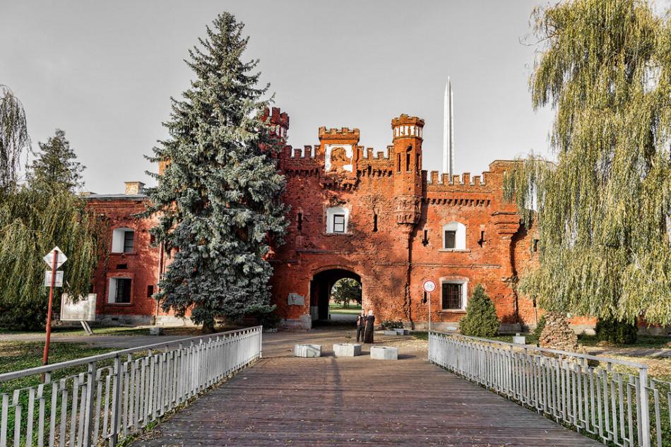Брест - Беловежская пуща